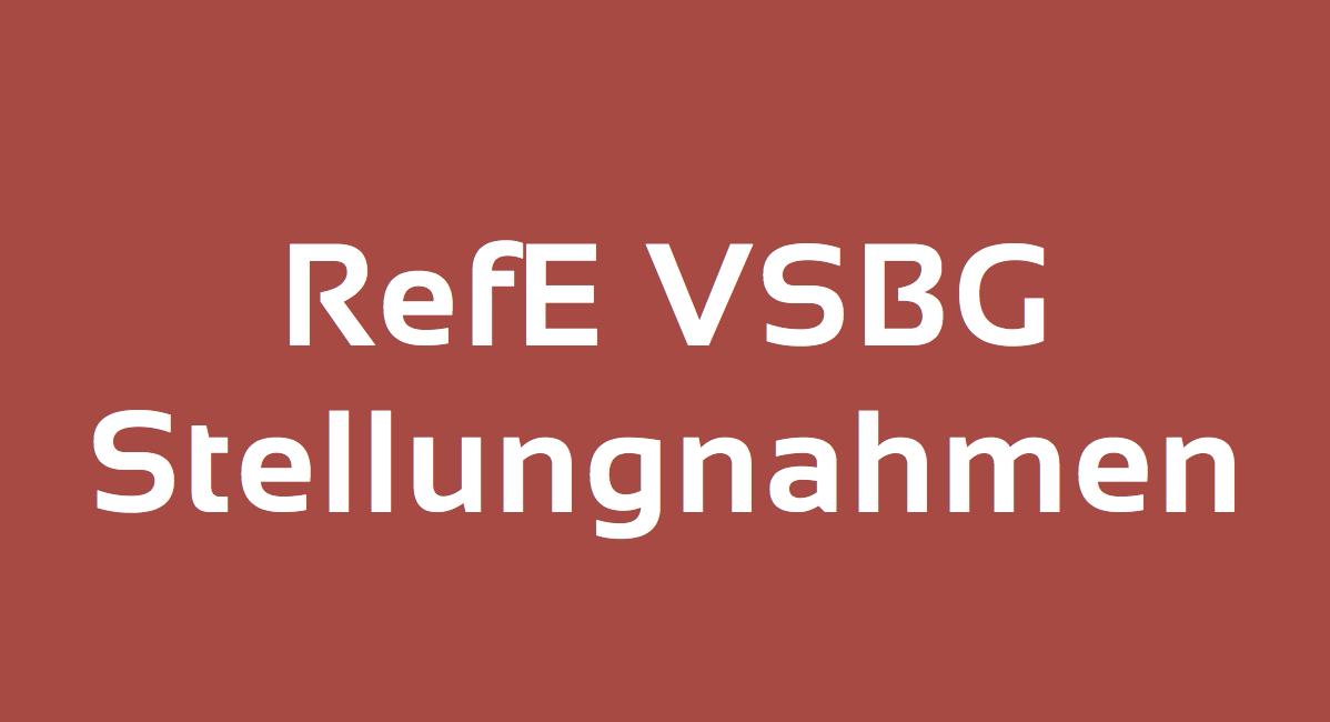 RefE VSBG Stellungnahmen
